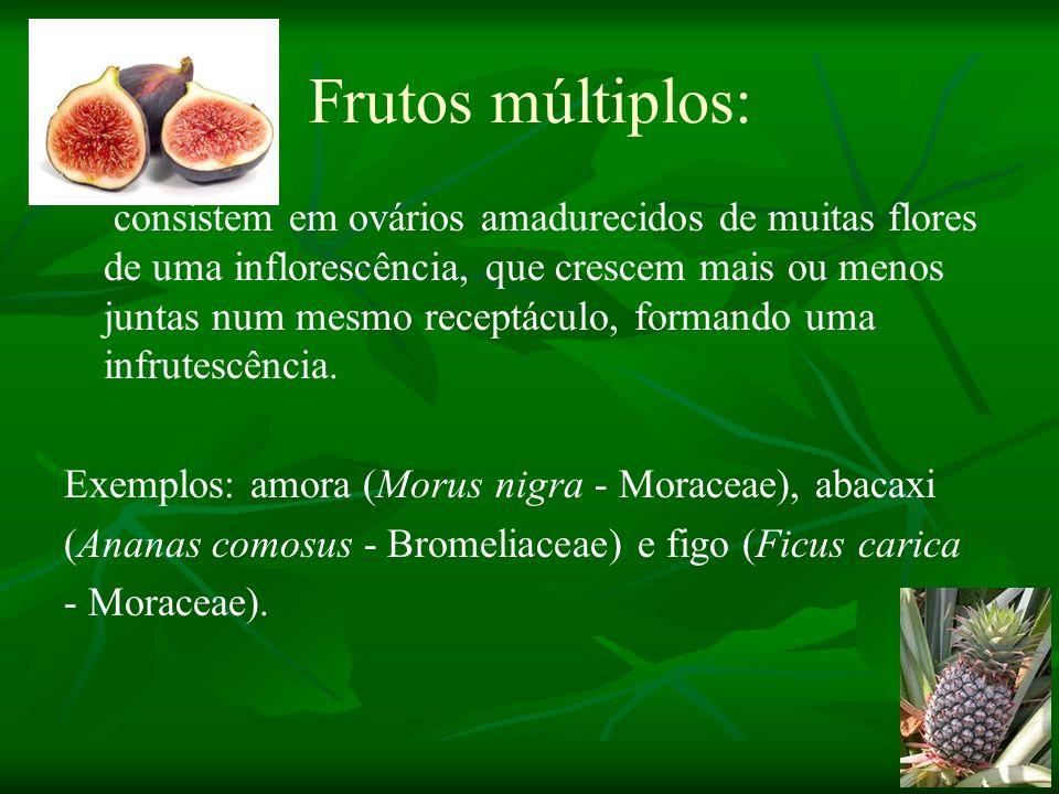 Frutos múltiplos: