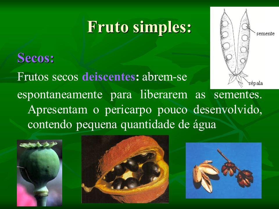Fruto simples: Secos: Frutos secos deiscentes: abrem-se