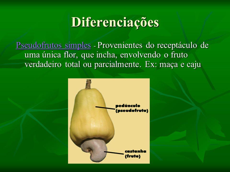 Diferenciações