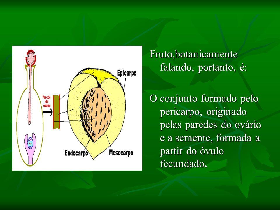 Fruto,botanicamente falando, portanto, é: