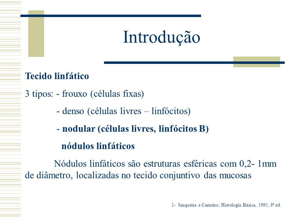 Introdução Tecido linfático 3 tipos: - frouxo (células fixas)