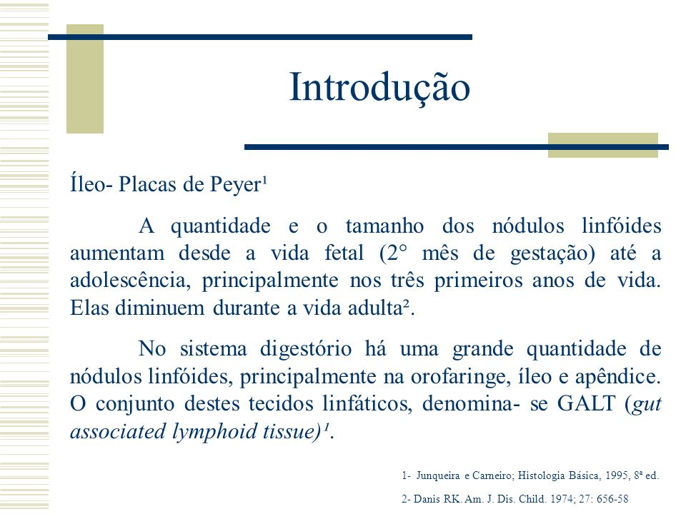 Introdução Íleo- Placas de Peyer¹