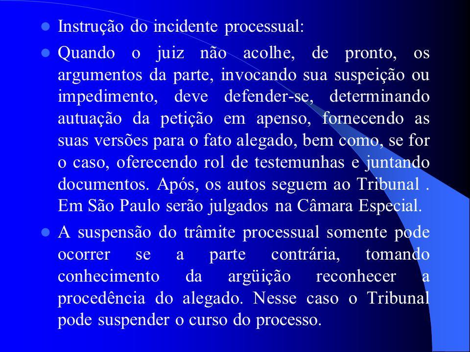 Instrução do incidente processual:
