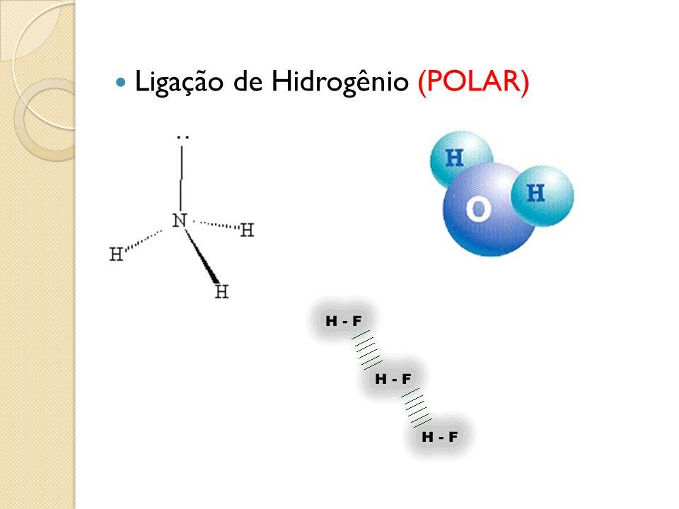 Ligação de Hidrogênio (POLAR)