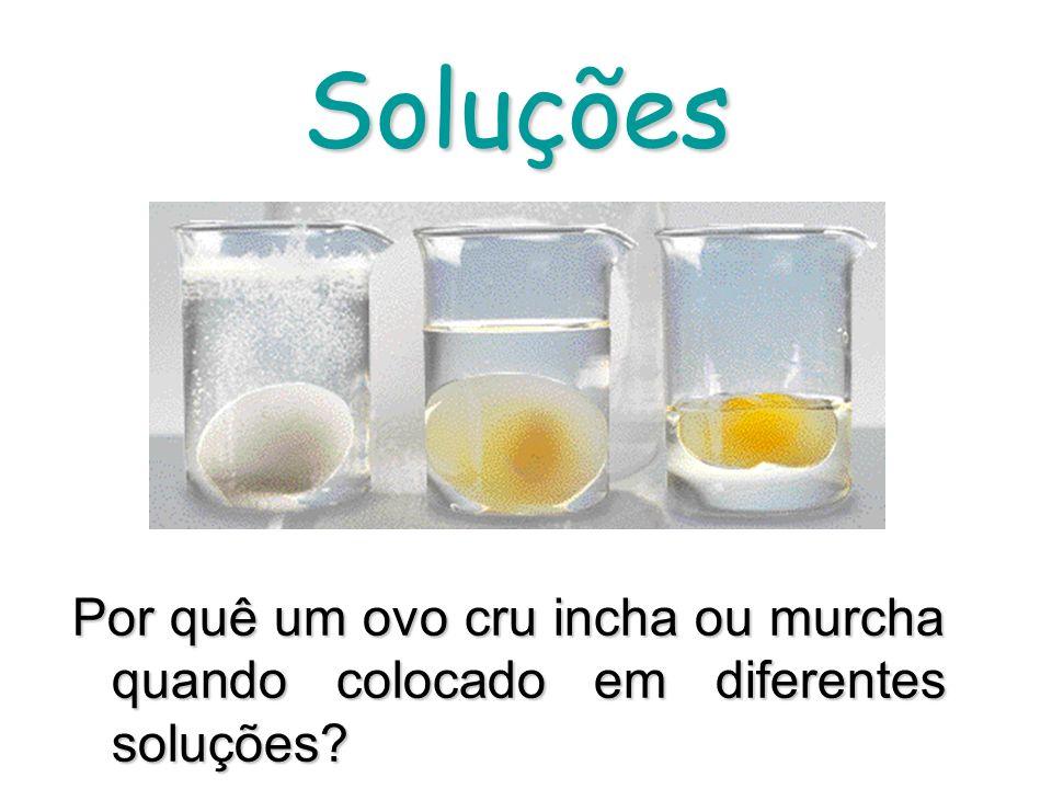Soluções Por quê um ovo cru incha ou murcha quando colocado em diferentes soluções