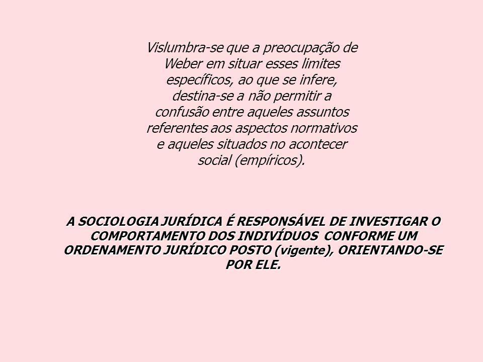 Vislumbra-se que a preocupação de Weber em situar esses limites específicos, ao que se infere, destina-se a não permitir a confusão entre aqueles assuntos referentes aos aspectos normativos e aqueles situados no acontecer social (empíricos).