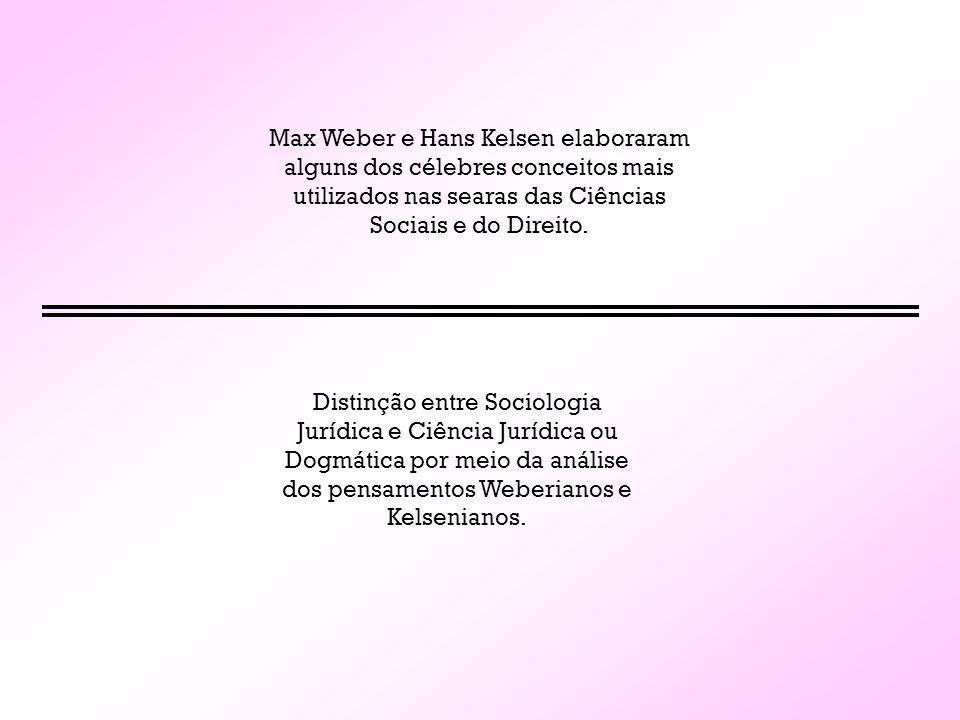 Max Weber e Hans Kelsen elaboraram alguns dos célebres conceitos mais utilizados nas searas das Ciências Sociais e do Direito.