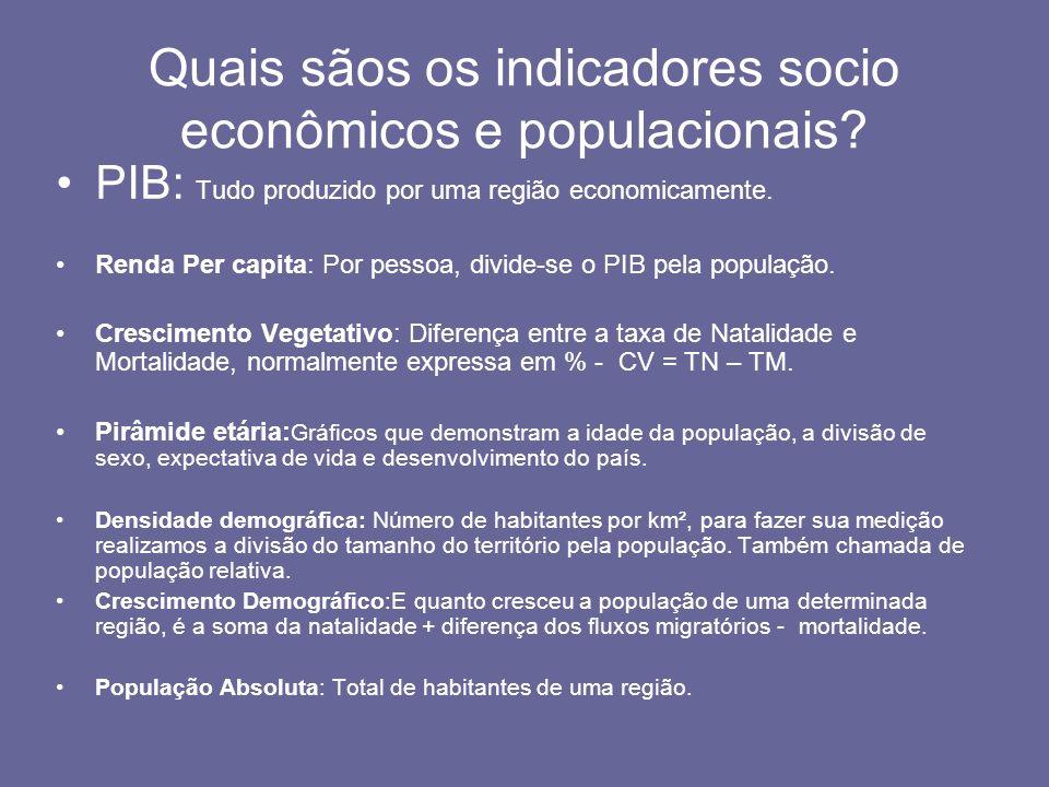 Quais sãos os indicadores socio econômicos e populacionais