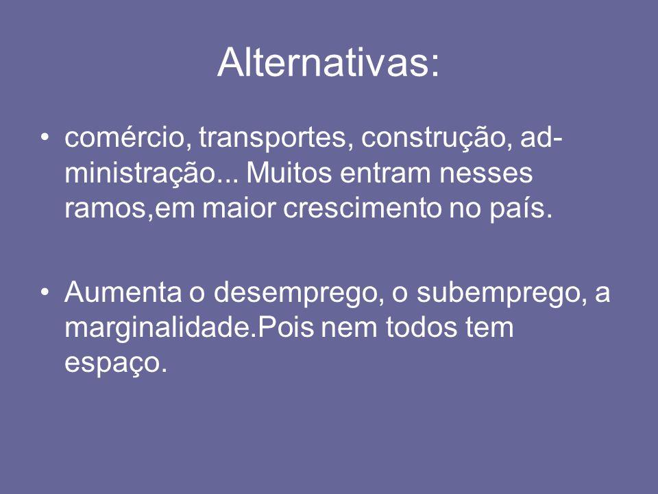 Alternativas: comércio, transportes, construção, ad-ministração... Muitos entram nesses ramos,em maior crescimento no país.