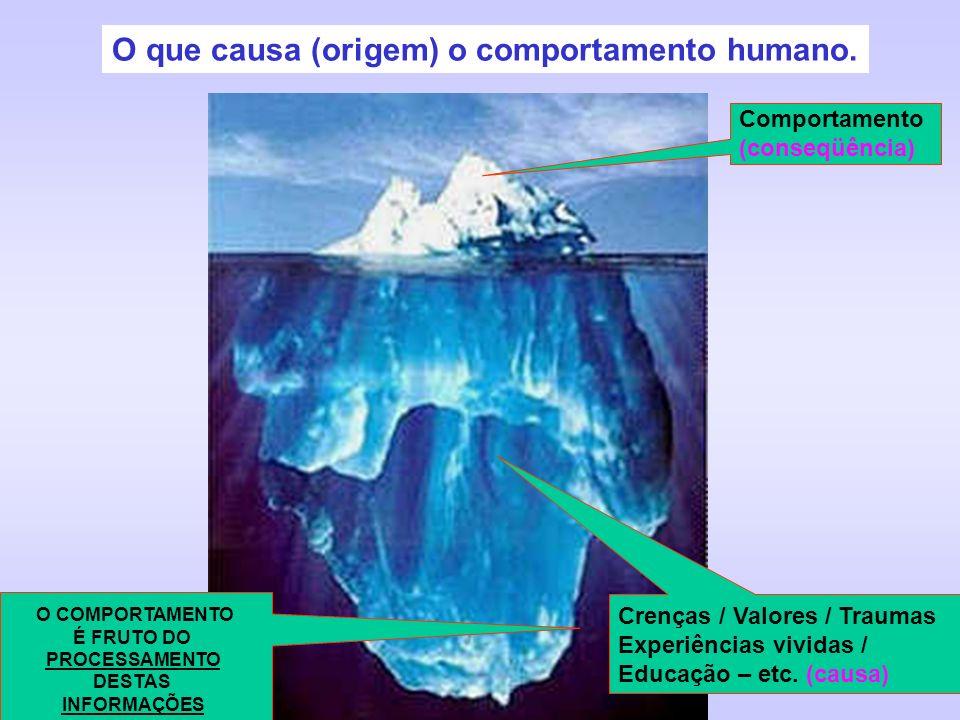 O que causa (origem) o comportamento humano.