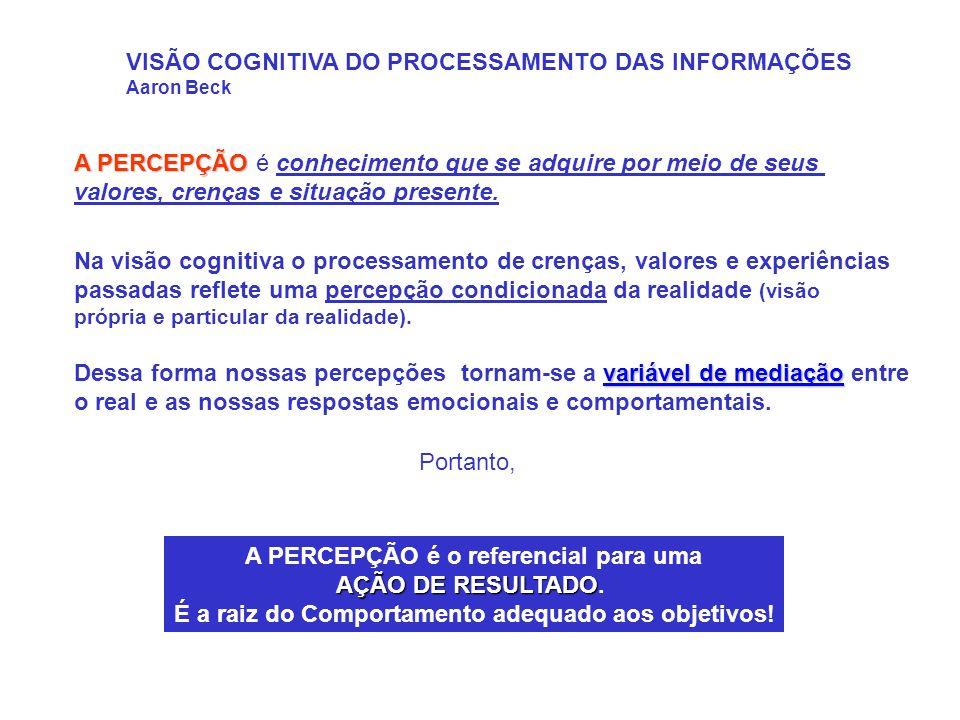 VISÃO COGNITIVA DO PROCESSAMENTO DAS INFORMAÇÕES