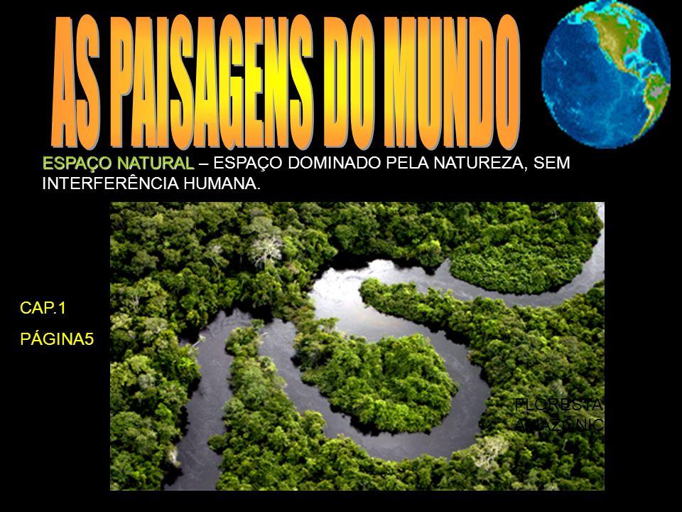 AS PAISAGENS DO MUNDO ESPAÇO NATURAL – ESPAÇO DOMINADO PELA NATUREZA, SEM INTERFERÊNCIA HUMANA. CAP.1.