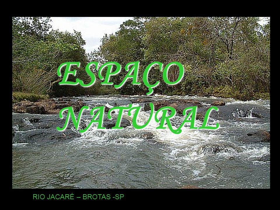 ESPAÇO NATURAL RIO JACARÉ – BROTAS -SP