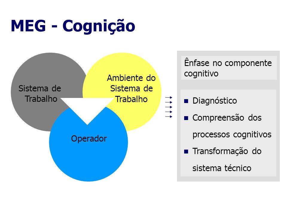 MEG - Cognição Ênfase no componente cognitivo Ambiente do Sistema de