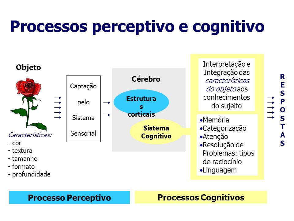 Processos perceptivo e cognitivo