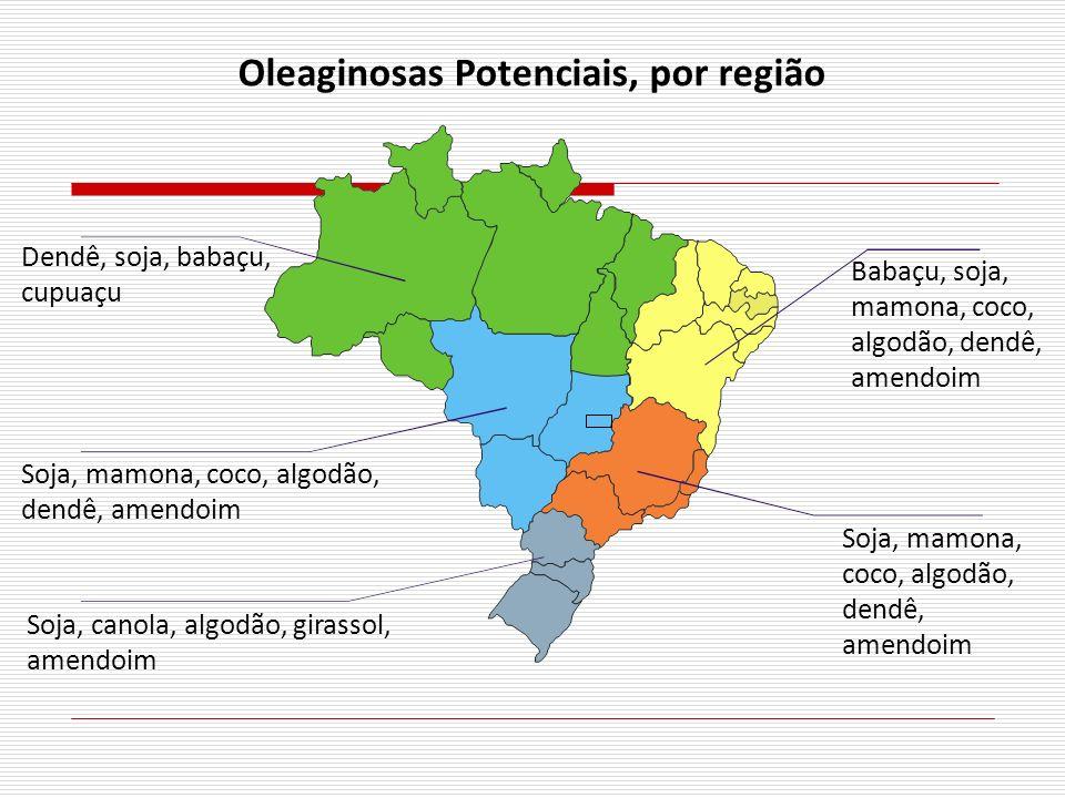 Oleaginosas Potenciais, por região