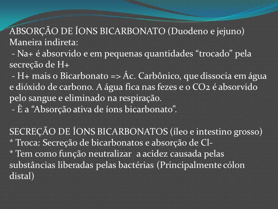 ABSORÇÃO DE ÍONS BICARBONATO (Duodeno e jejuno)