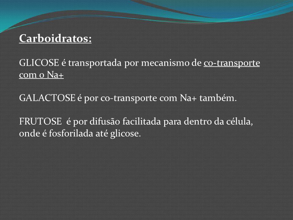 Carboidratos:GLICOSE é transportada por mecanismo de co-transporte com o Na+ GALACTOSE é por co-transporte com Na+ também.