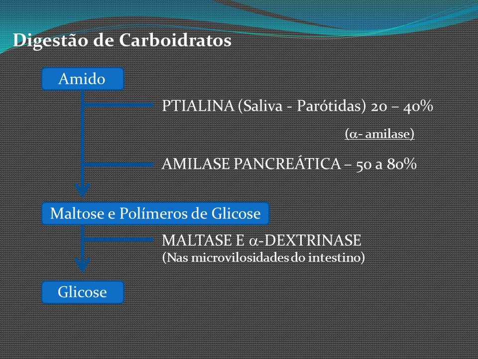 Maltose e Polímeros de Glicose
