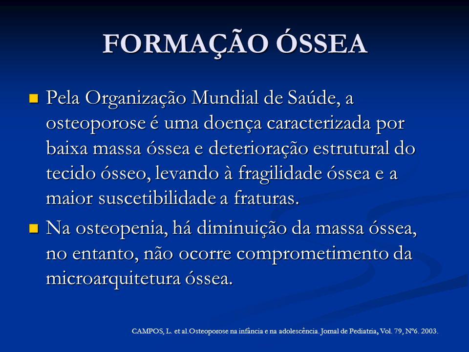 FORMAÇÃO ÓSSEA