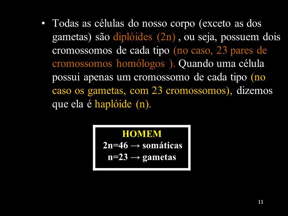 Todas as células do nosso corpo (exceto as dos gametas) são diplóides (2n) , ou seja, possuem dois cromossomos de cada tipo (no caso, 23 pares de cromossomos homólogos ). Quando uma célula possui apenas um cromossomo de cada tipo (no caso os gametas, com 23 cromossomos), dizemos que ela é haplóide (n).