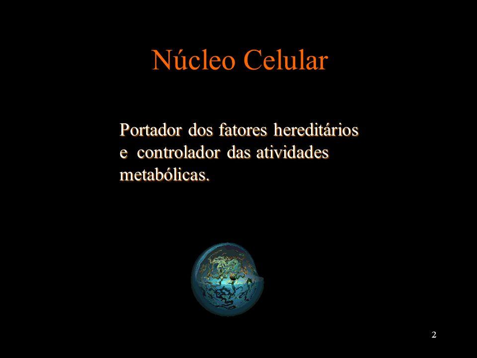 Núcleo Celular Portador dos fatores hereditários e controlador das atividades metabólicas.