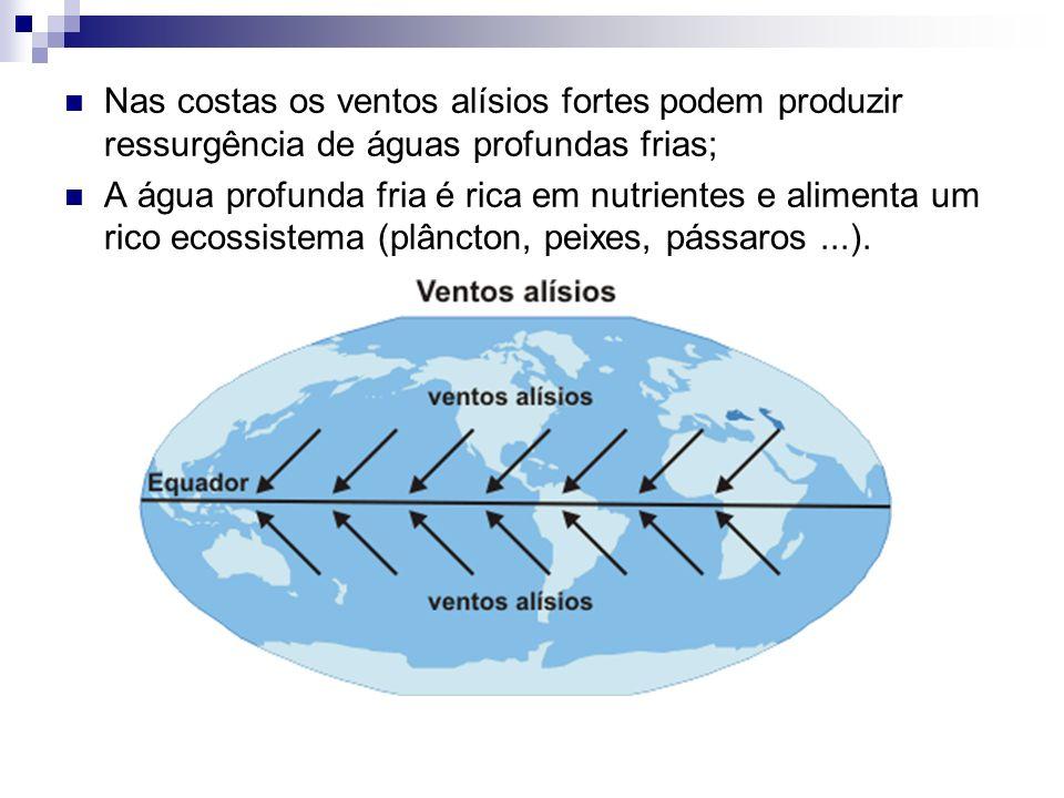 Nas costas os ventos alísios fortes podem produzir ressurgência de águas profundas frias;