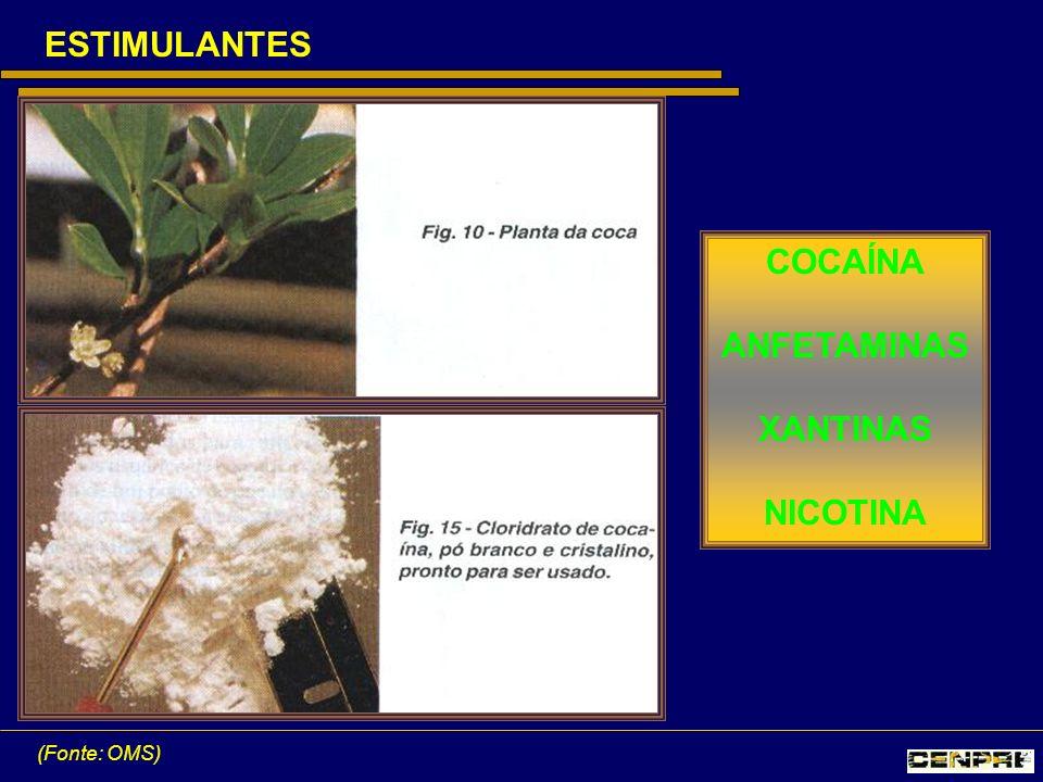 ESTIMULANTES COCAÍNA ANFETAMINAS XANTINAS NICOTINA
