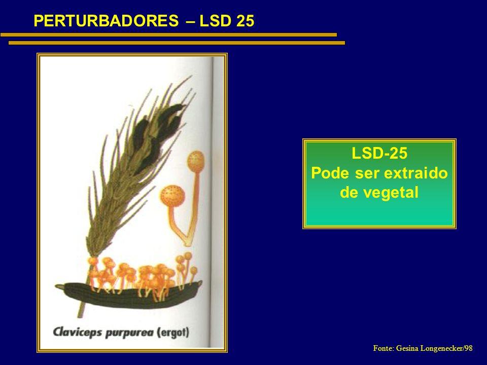 PERTURBADORES – LSD 25 LSD-25 Pode ser extraido de vegetal