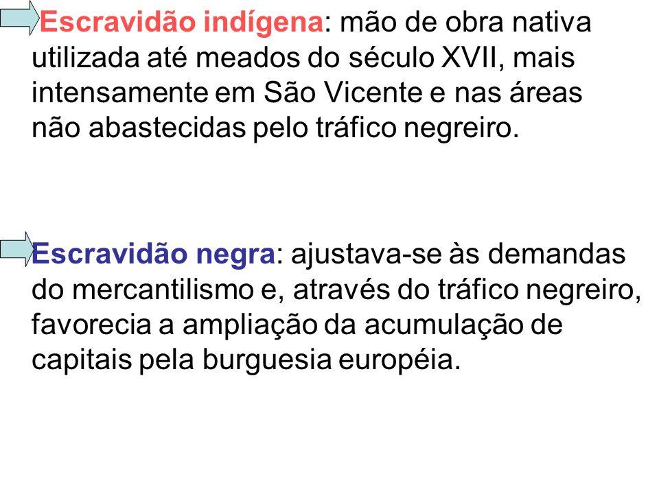 Escravidão indígena: mão de obra nativa utilizada até meados do século XVII, mais intensamente em São Vicente e nas áreas não abastecidas pelo tráfico negreiro.