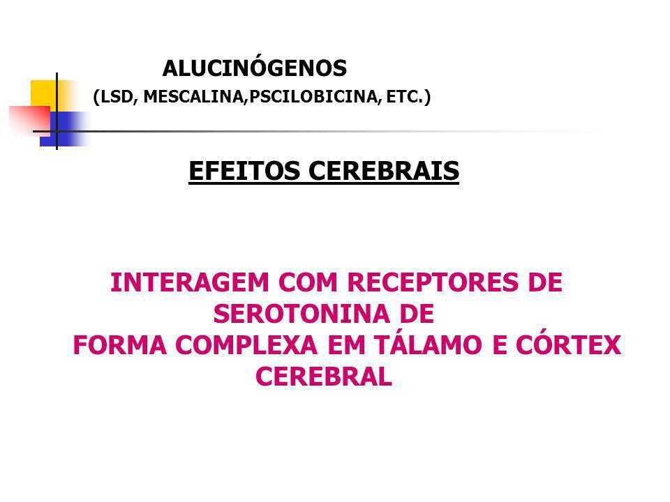 EFEITOS CEREBRAIS FORMA COMPLEXA EM TÁLAMO E CÓRTEX CEREBRAL