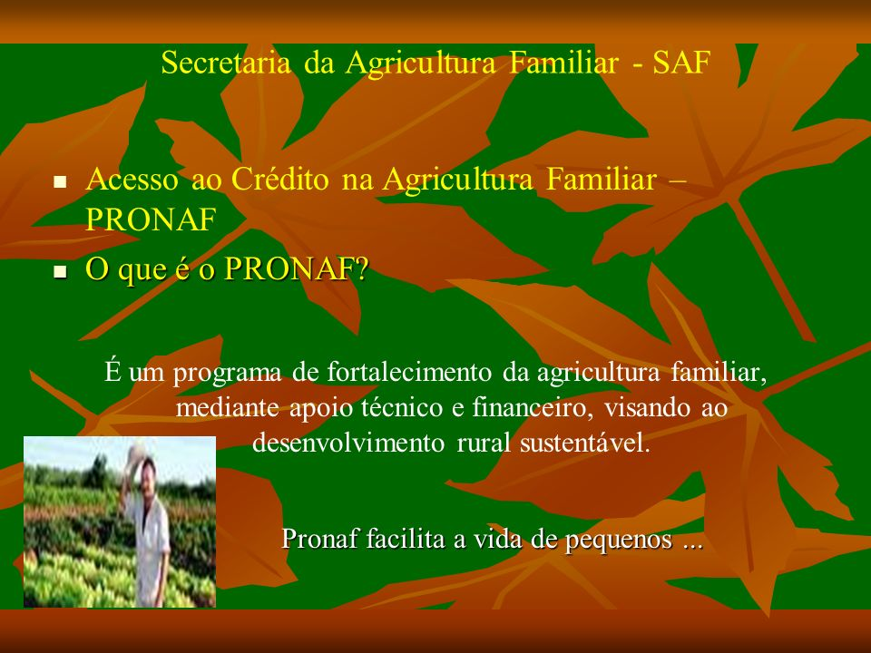 Secretaria da Agricultura Familiar - SAF