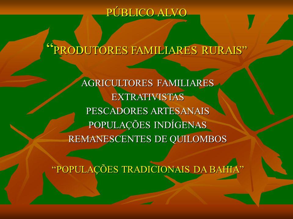 PÚBLICO ALVO PRODUTORES FAMILIARES RURAIS