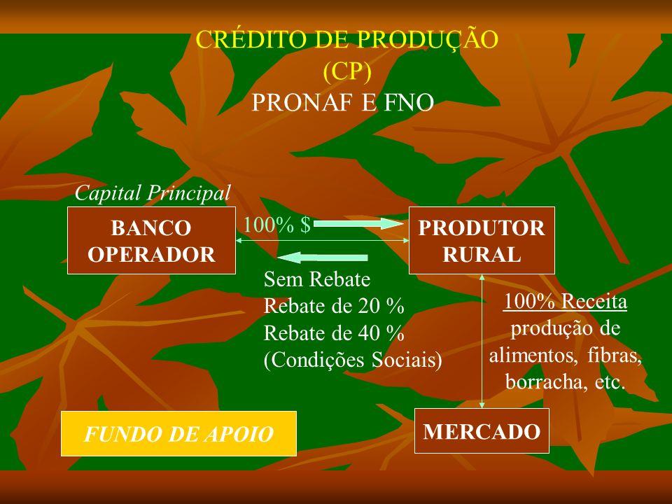 CRÉDITO DE PRODUÇÃO (CP) PRONAF E FNO Capital Principal BANCO OPERADOR