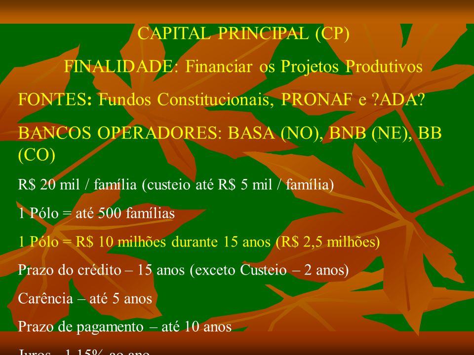 CAPITAL PRINCIPAL (CP) FINALIDADE: Financiar os Projetos Produtivos