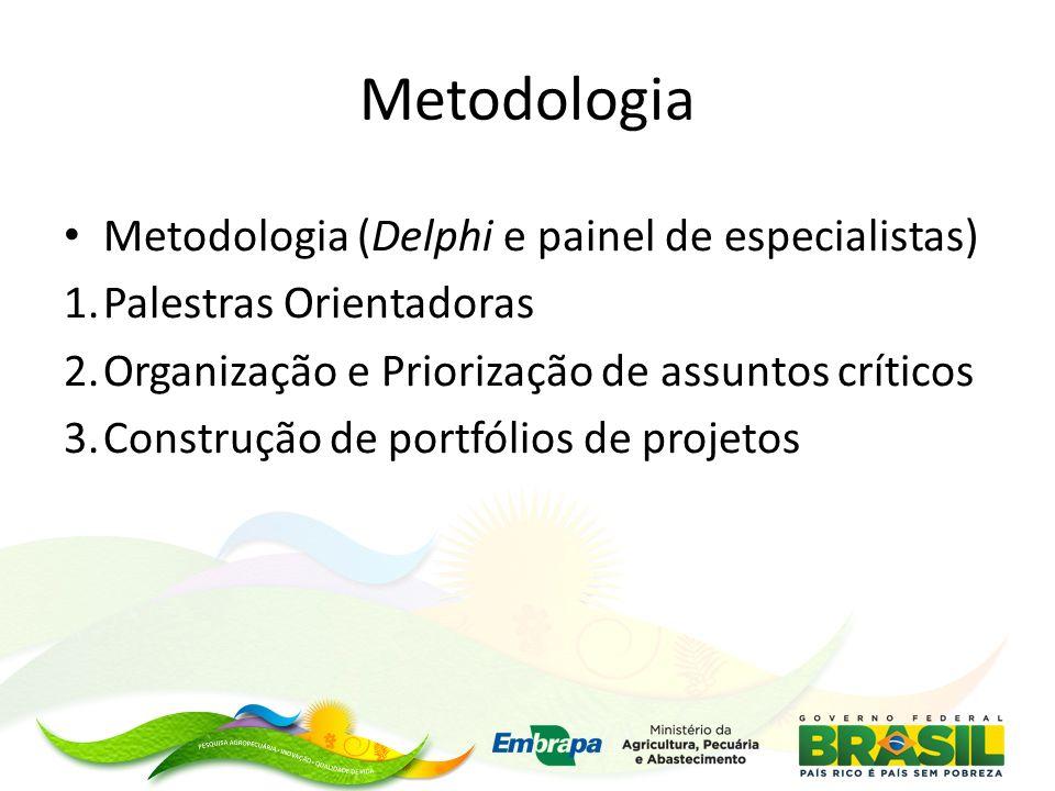 Metodologia Metodologia (Delphi e painel de especialistas)