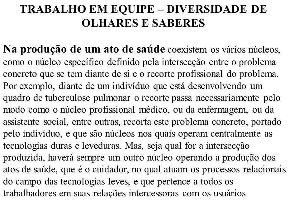 TRABALHO EM EQUIPE – DIVERSIDADE DE OLHARES E SABERES