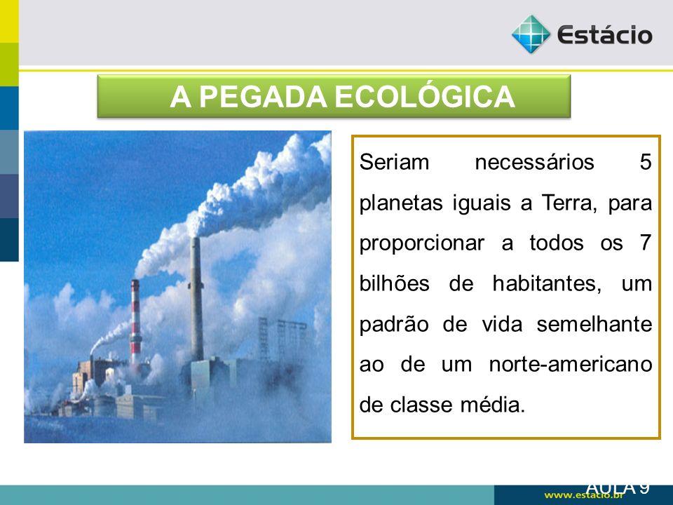 A PEGADA ECOLÓGICA