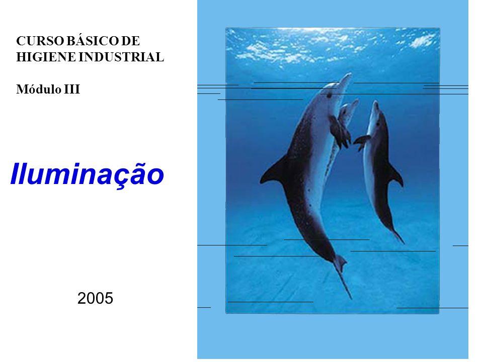 CURSO BÁSICO DE HIGIENE INDUSTRIAL Módulo III Iluminação 2005