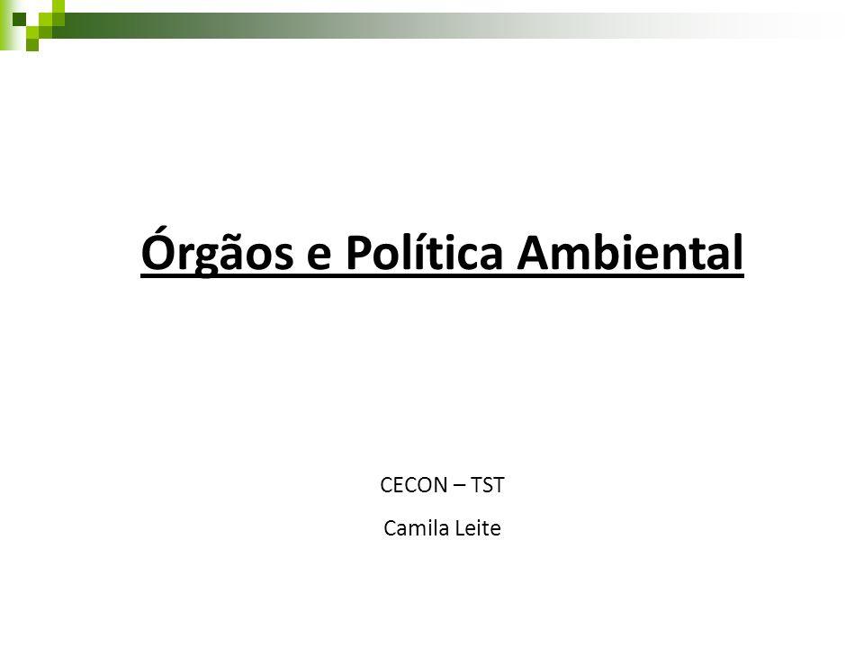 Órgãos e Política Ambiental
