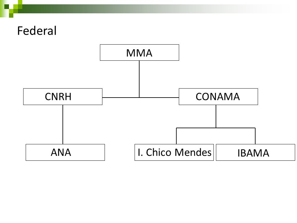 Federal MMA CNRH CONAMA ANA I. Chico Mendes IBAMA