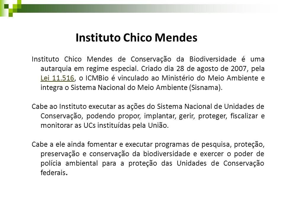 Instituto Chico Mendes