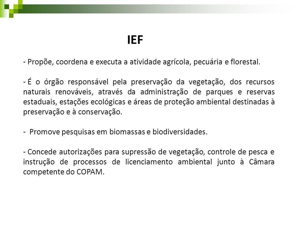IEF- Propõe, coordena e executa a atividade agrícola, pecuária e florestal.