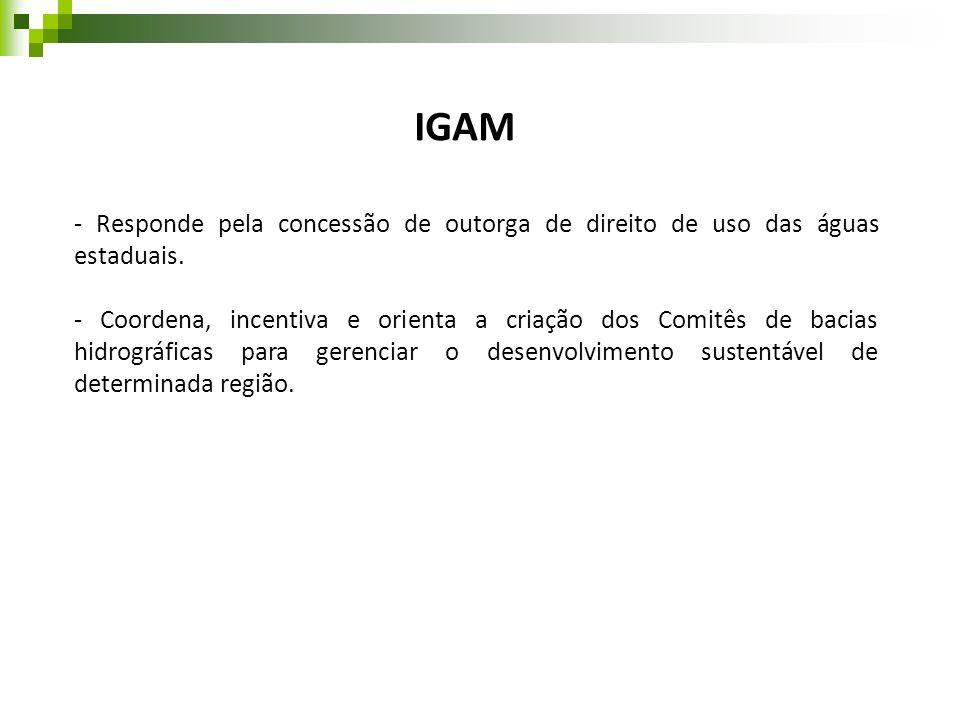 IGAM- Responde pela concessão de outorga de direito de uso das águas estaduais.