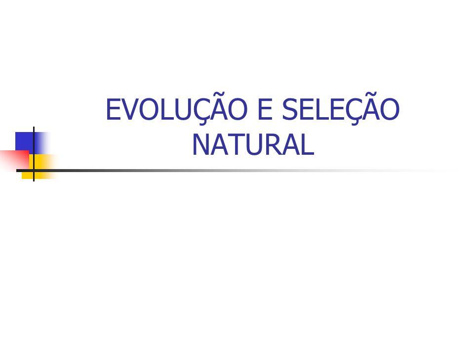 EVOLUÇÃO E SELEÇÃO NATURAL