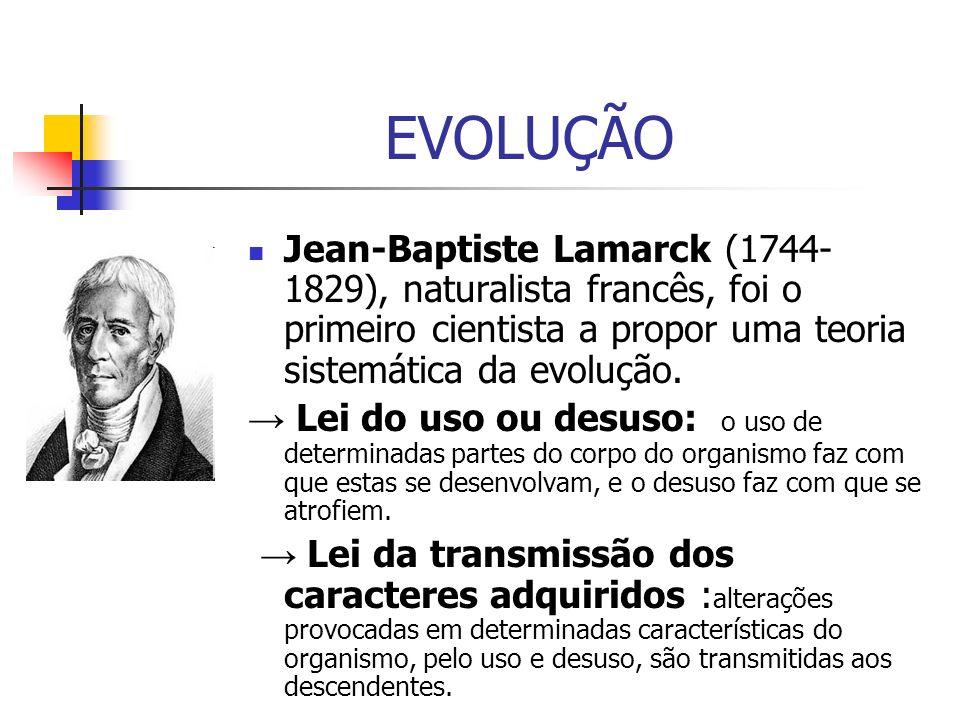 EVOLUÇÃO Jean-Baptiste Lamarck (1744-1829), naturalista francês, foi o primeiro cientista a propor uma teoria sistemática da evolução.