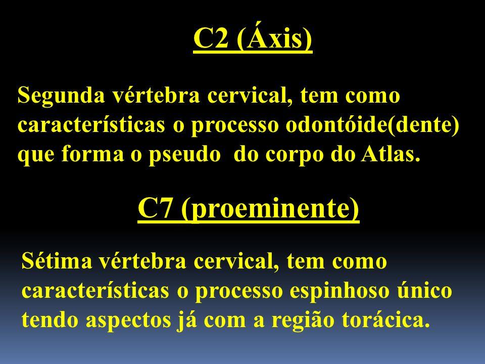 C2 (Áxis) C7 (proeminente)
