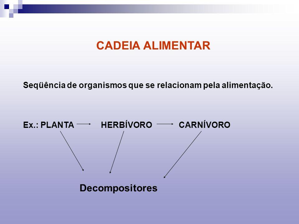CADEIA ALIMENTAR Decompositores