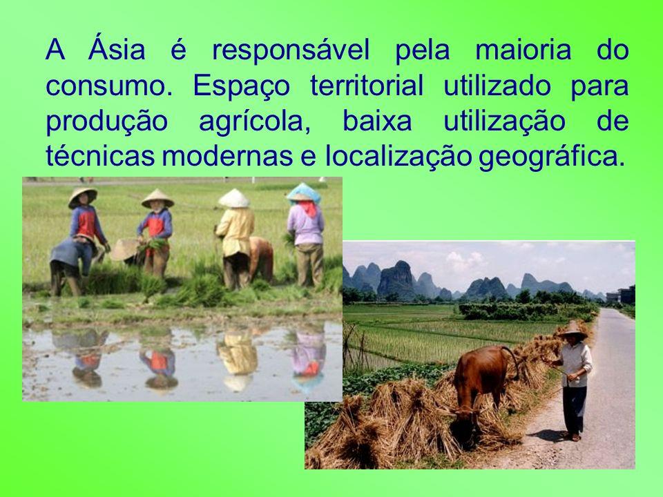 A Ásia é responsável pela maioria do consumo