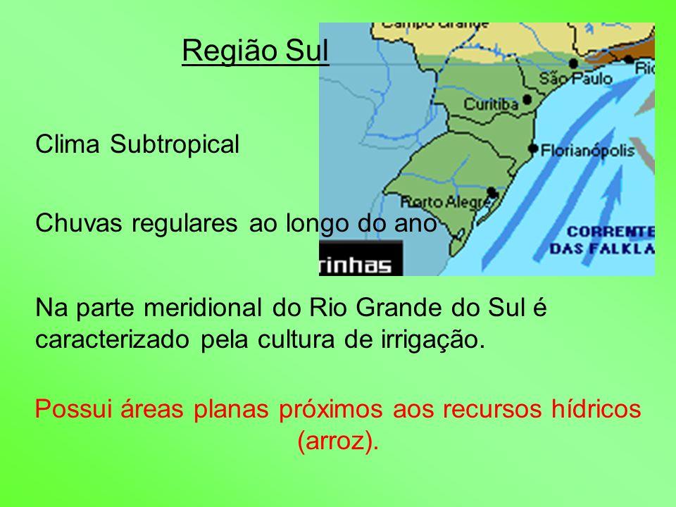 Possui áreas planas próximos aos recursos hídricos (arroz).
